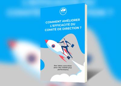 Comment améliorer l'efficacité du Comité de Direction ?